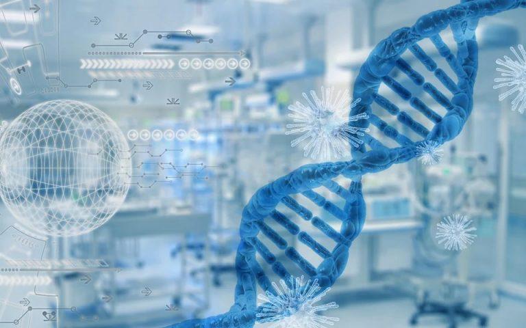 DNA perimä