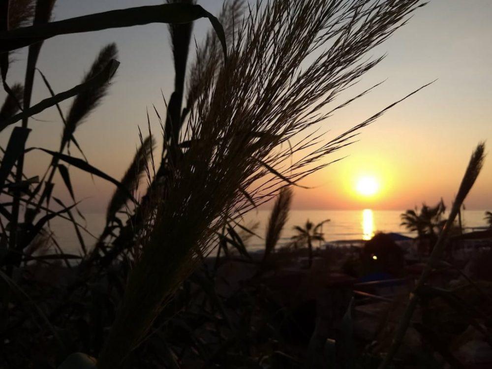 Auringonlasku - Valon ja pimeän luonnollinen muutos säätelee vuorokausirytmiä